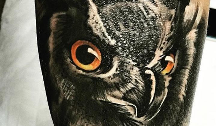 Tatuagem de Coruja: Significado, Fotos, Ideias e muita tatuagem para você