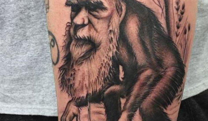 Tatuagens Evolutivas de Charles Darwin
